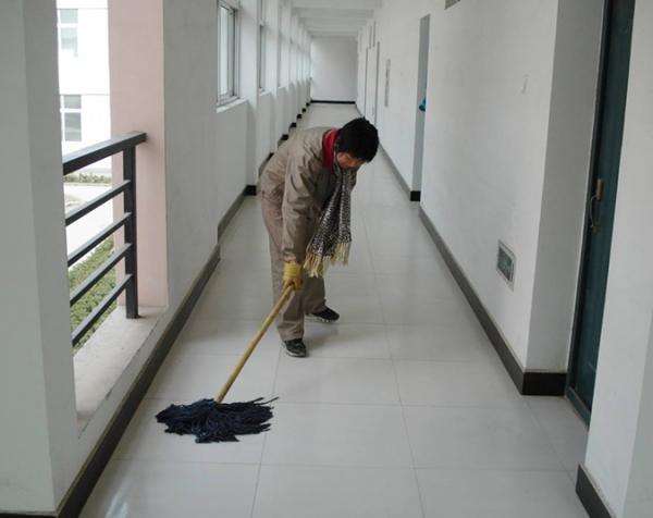 专业楼道保洁