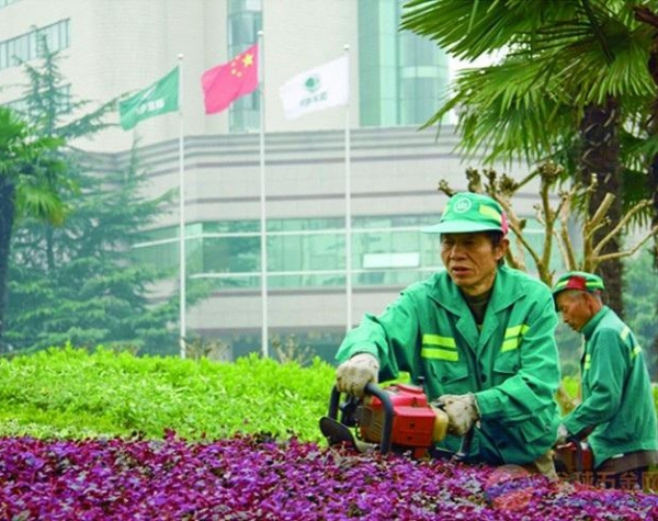 阳泉绿化景观养护