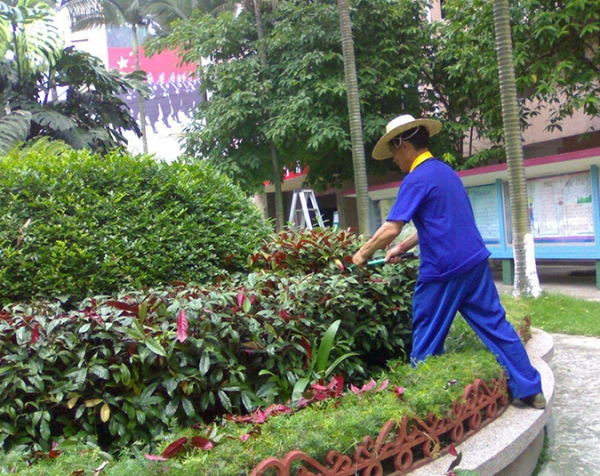 阳泉园林养护施工