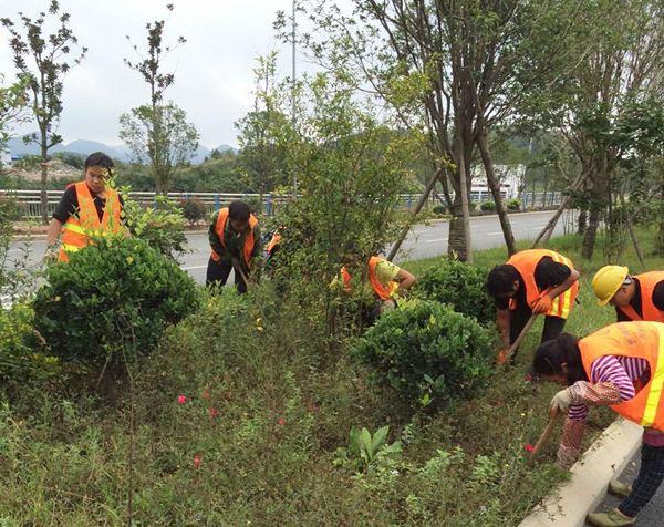 阳泉绿化养护工程